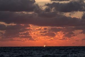 dernier rayon de soleil