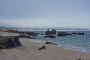 plage de Ribeira