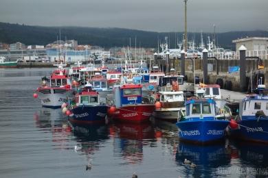 Port de pêche de Ribeira