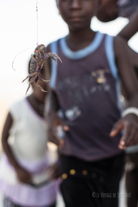 les petits et les crabes