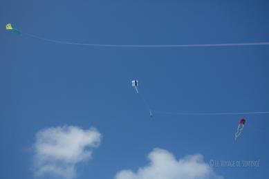 séance cerf volant