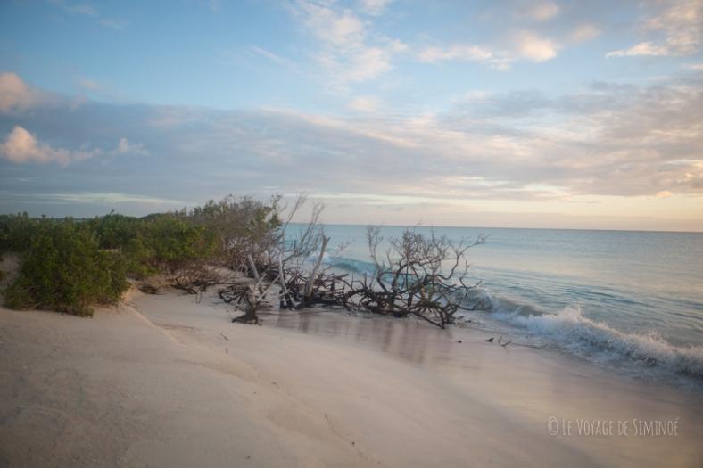Barbuda Low Bay