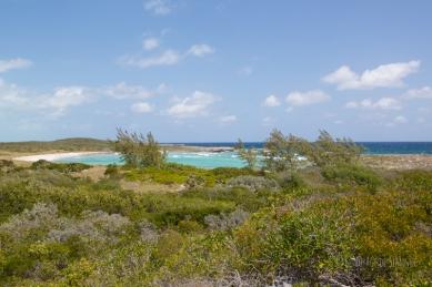 Great Guana Cay